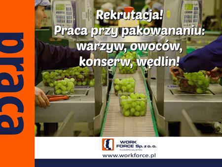 wf-praca-warzywa-owoce